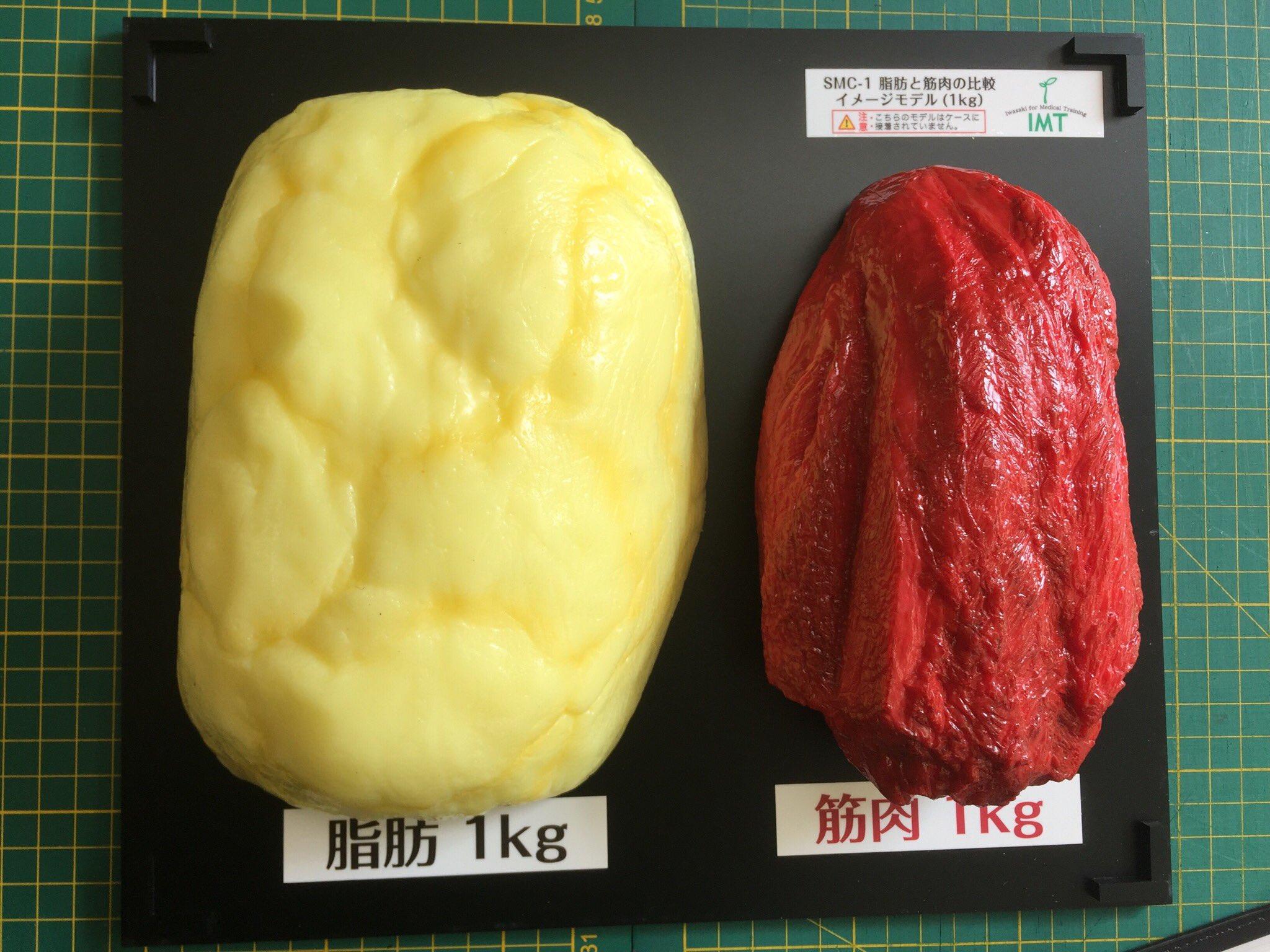 脂肪1kgと筋肉1kg